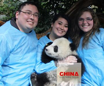 29121592ctBr_China Panda Tour